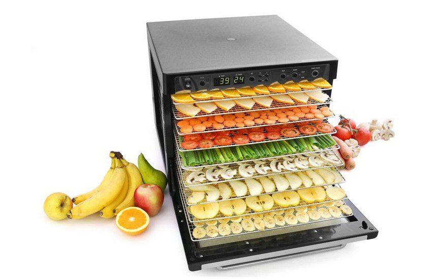 Какую сушилку для овощей и фруктов выбрать