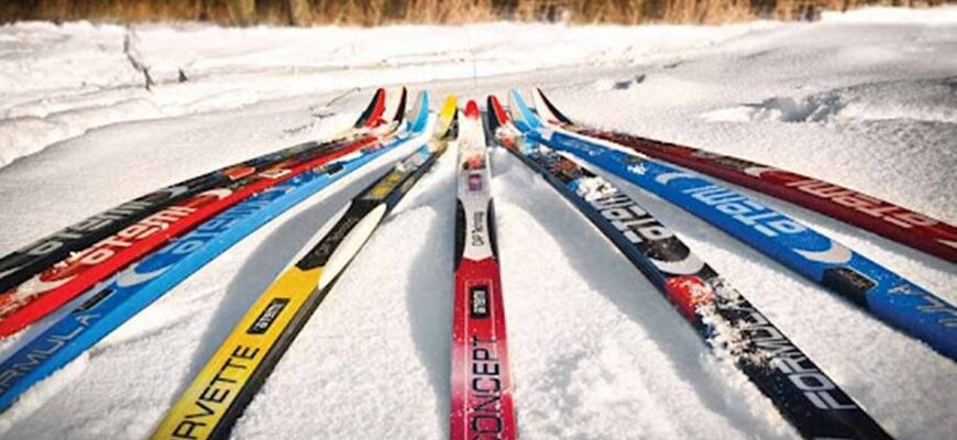 лучшие беговые лыжи